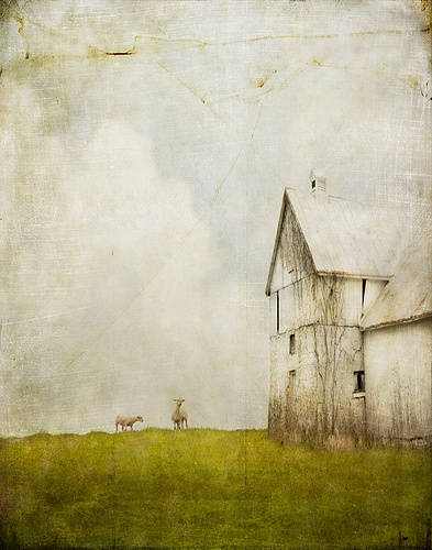 the importance of wonder...  jamie heiden:
