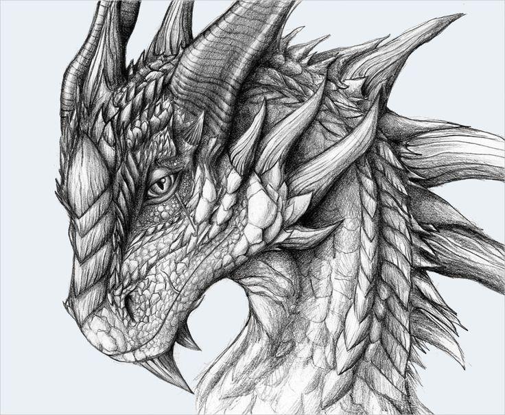 01bbb84c7 tatouage bracelet maori - Les Tatouages Simple Dragon Tattoo Sketches