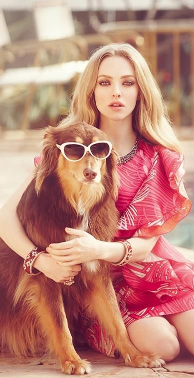 Amanda Seyfried's dog wearing #sunglasses #celebrities