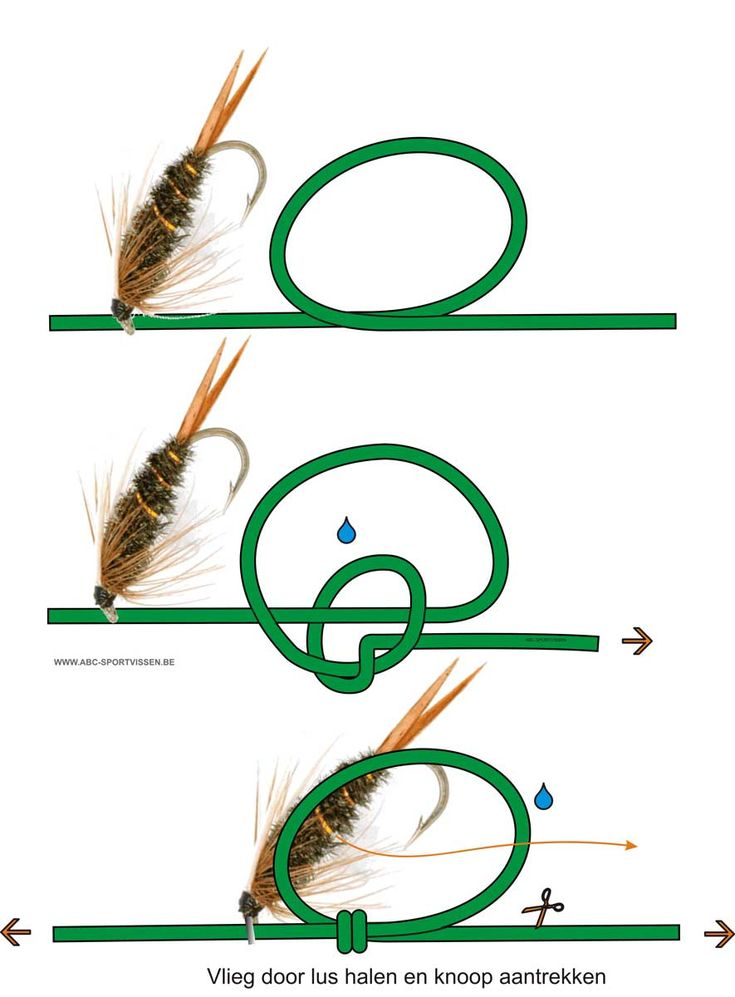 http://www.abc-sportvissen.be/images/images%20vissersknopen/turle1.jpg