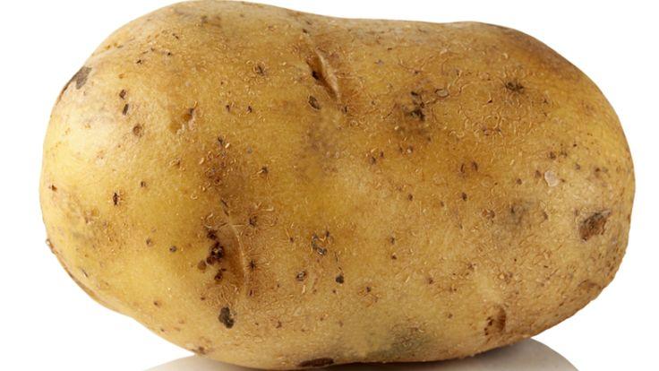 Как выращивать картофель под сеном? | Растения | ШколаЖизни.ру