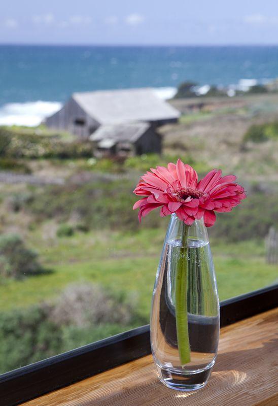 Hotels Near Bodega Bay Sea Ranch Lodge Gallery Mendocino Coast Hotel