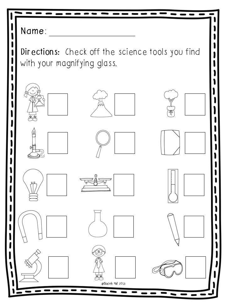 Science Tools Freebie Kindergarten science, Science