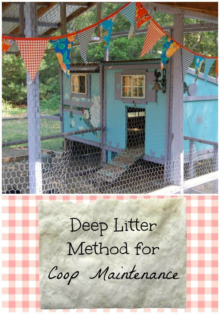 Use the Deep Litter Method of Coop Maintenance for rich compost & a healthy flock with less work!