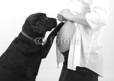 Dog & Baby Bump @ Leah we need to take this picture this weekend!!!