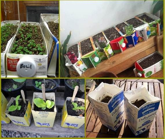 78 best Recycling ideas for milk cartons in the garden images on