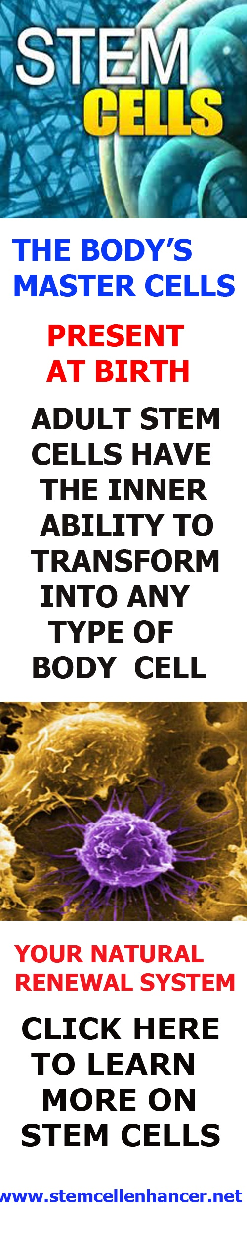 adult stem cells are present when you are born. Your body needs adult stem cells & stemenhance from Stemtech offers you a solution to increase stem cell nutrition in your body to keep you healthy & natural health therapy to optimize your health. http://www.stemcellenhancer.net Repin this thanxs jenn