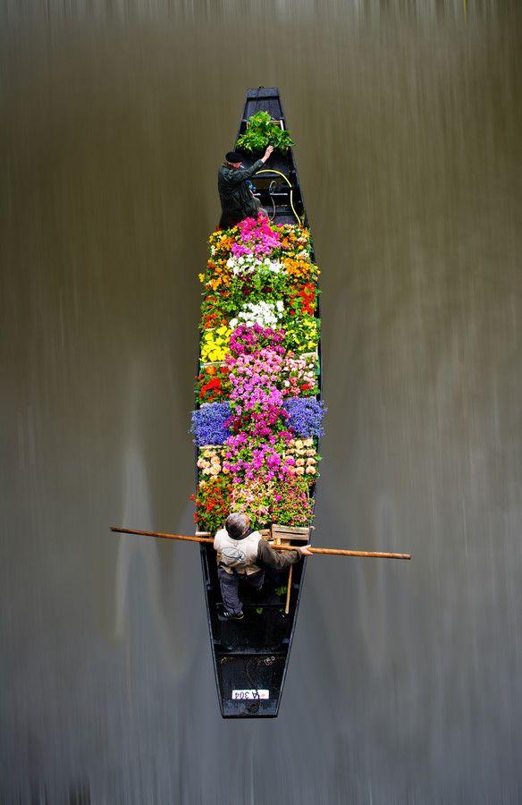 Floating Flower Market-how cool!!!!