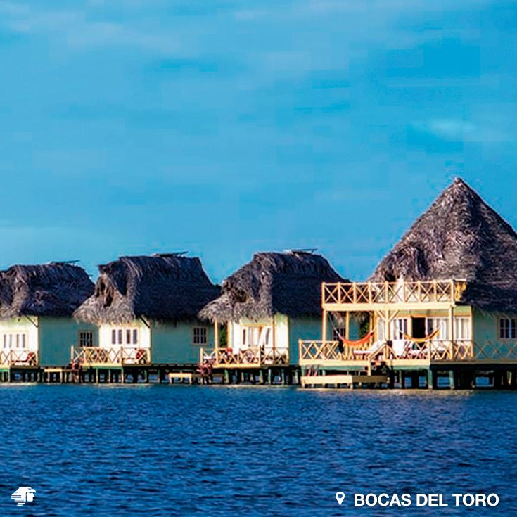 Bocas del Toro, Panamá. En este archipiélago con una decena de islas y cayos al noreste de la ciudad de Panamá, el mar, verde y transparente, es un mar interior, calmo como un lago, y salpicado de pequeñas islas de tupidos manglares, sin playas.