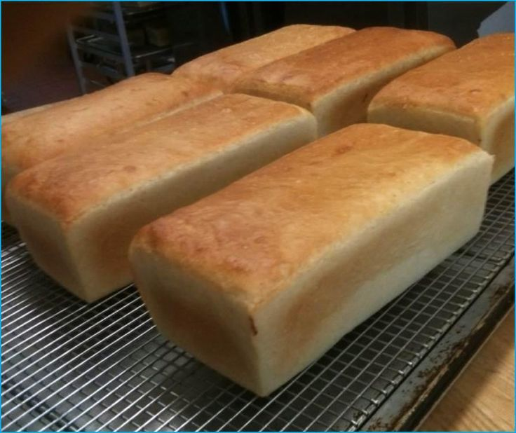 Salt Rising Bread: An Appalachian Tradition of Longing and Wild Microbes | West Virginia Public Broadcasting