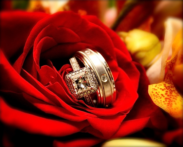 Beautiful Wedding Rings, Wedding at The Club At Sonterra, photo by Alamo Photographic