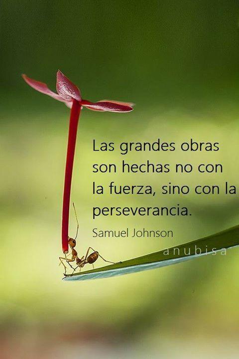 Frases Hábitos De Éxito: Las grandes obras son hechas con la perseverancia..... - https://alegrar.me/frases-habitos-exito-las-grandes-obras-hechas-la-perseverancia/