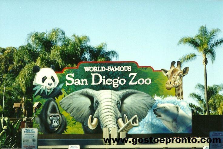 san diego zoo   San Diego Zoo   Gosto e ProntoGosto e Pronto