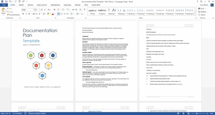Documentation Plan Template - Download 28 page MS Word sample template