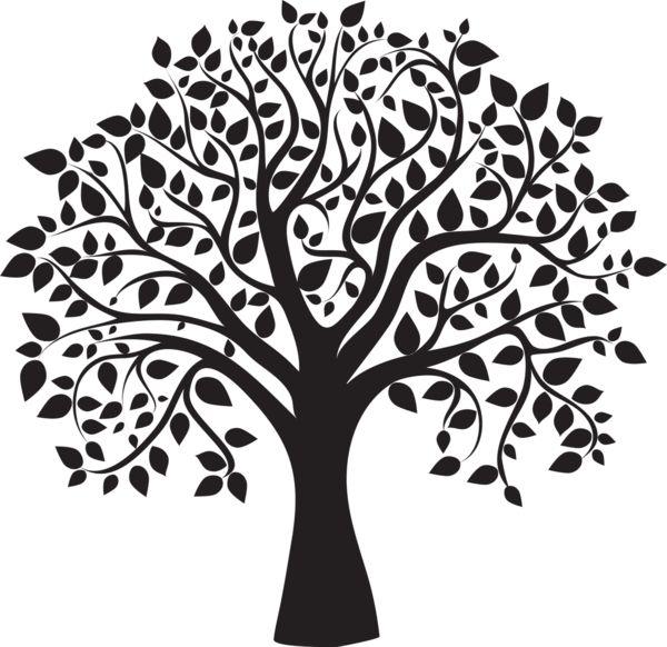 arbre,png                                                                                                                                                     Plus
