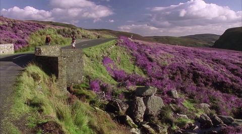 wicklow national park - Google Search