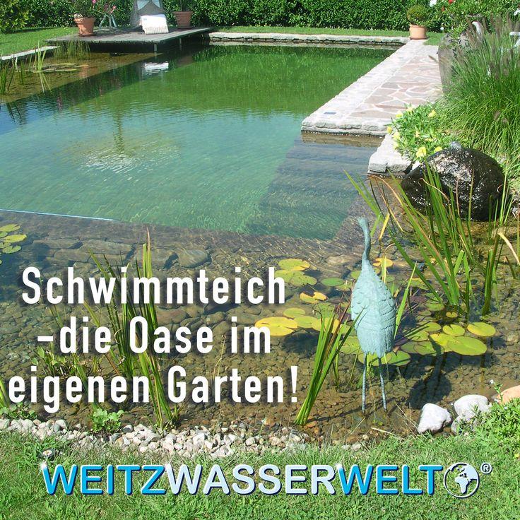 #Schwimmteich - die #Oase im eigenen #Garten! Weitz #Wasserwelt hilft mit den Hochleistungsprodukten #ALGENKILLER Protect® + #Brilliant®, unerwünschte Effekte zu beseitigenoder erst gar nicht entstehen zu lassen. Ihr Vorteil ist ein praktischer und neuer Weg der natürlichen Wasseraufbereitung. Hilfe auch bei Härtefällen! Die WEITZ Wasserwelt-Bratung-Hotline + 49 (0)6022 /21210 informiert über diese und auch andere #Teichpflege - Produkte. Oder ganz bequem über E-Mail…