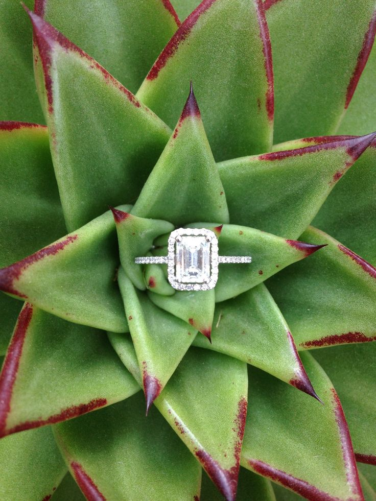 ❤️❤️❤️ I love this ring!!!! The halo around the emerald cut diamond makes it much less harsh!