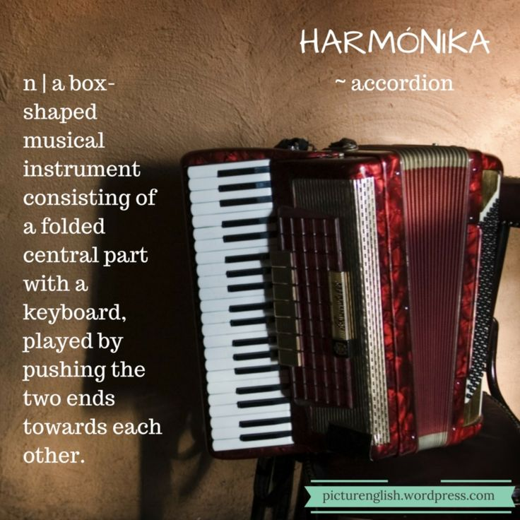 Accordion / Harmónia / Tangóharmónika