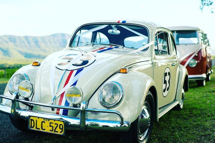 The best way to rock up to your wedding.  #loveatforsyth #huntervalley #destinationwedding #herbie #vdubb #escarabajo #love #retro