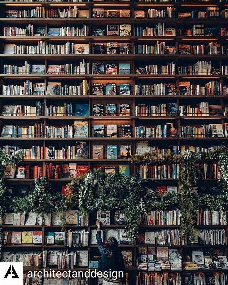 Cafe Mit Buchladen Innendesign Bilder. die besten 25+ kleiner ...