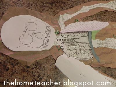 Human Body: Printables | The Home Teacher