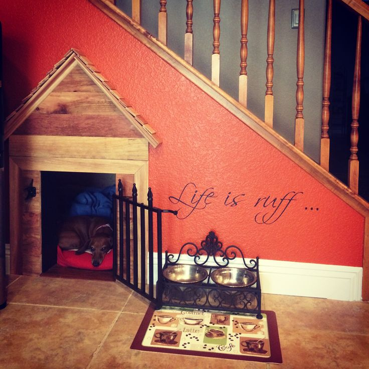 Under the stairs doghouse... My dogs are spoiled!
