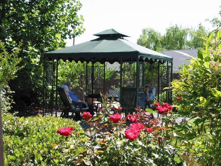 Replacement Canopy For Backyard Creations Gazebo : Backyard Gazebo  Backyard Creations  Pinterest