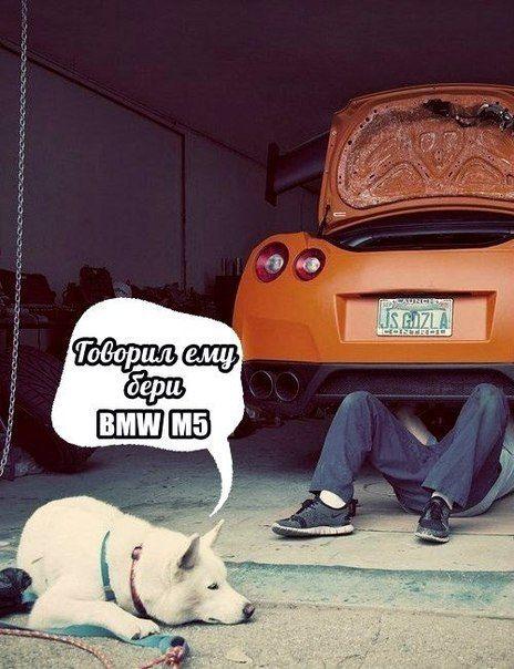 Никак не могу понять, почему пешеходы уверены в исправности тормозов у моей машины больше, чем я?!.. #Юмор_Автодок