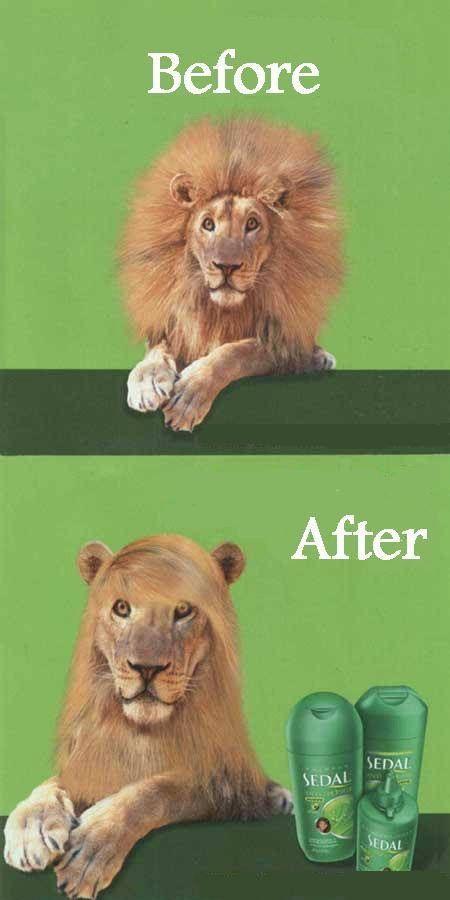 ¡Para pelos salvajes! Nada de modelos con cabellos 10. En este caso la creatividad viene de dejar atrás los estereotipos de estos anuncios.