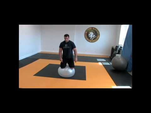POWERING THROUGH: The Value of Stability Ball drills for BJJ and proprioception