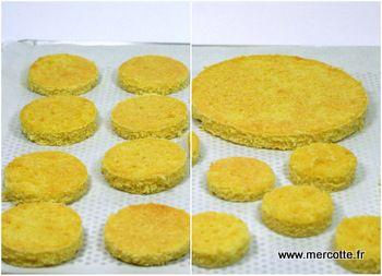 Bases pour entremets : dacquoises, biscuit à la cuillère, pain de gênes, cakes… recettes pour flexipat et moule rond 18 cm