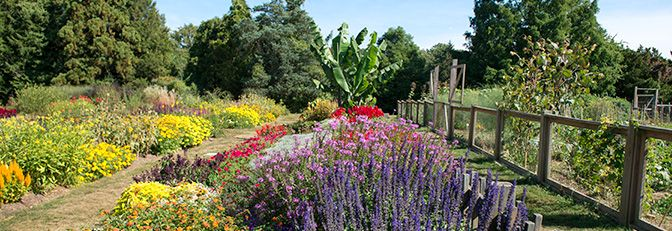 The Official Botanic Garden Of Rutgers: 64 Best Images About GARDENS TO VISIT On Pinterest
