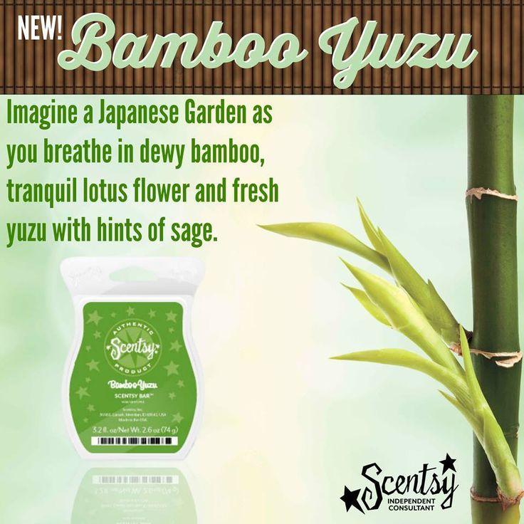 Melt into a heightened sense of consciousness as the cubes of Bamboo Yuzu warm and the tranquil scents swirl. Exotic Asian yuzu blends its restrained citrus note with languid lotus and a breath of sage, bordered with tender shoots of fresh, green bamboo, a peaceful ambiance that calms and relaxes. #scentsy #australia #makesgoodscents #zen #Japanese https://makesgoodscents.scentsy.com.au/