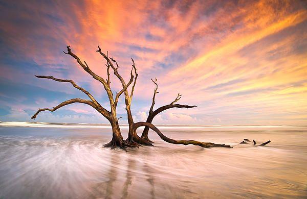 The Calm - #Charleston SC #landscape #photography by Dave Allen www.daveallenphotography.com