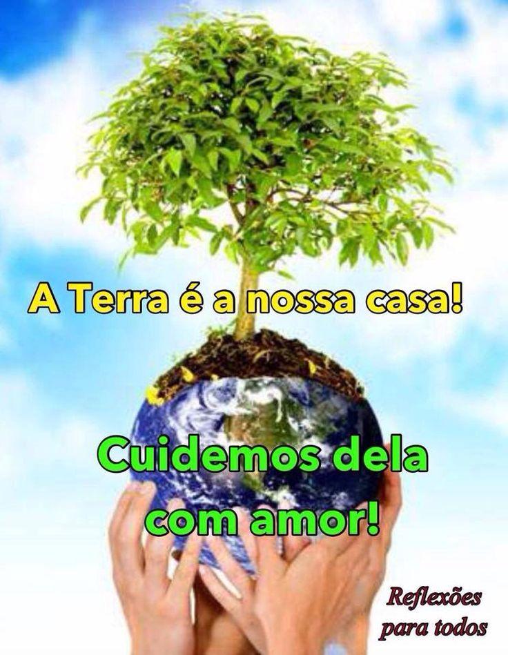 """21 de Setembro - Dia da Árvore  Acesse a linda """"Prece da Árvore""""."""