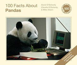 Fun Facts about Pandas - did you know that when going backwards Pandas can move faster than Cheetahs? :-)