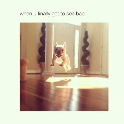 When you finally get to see bae