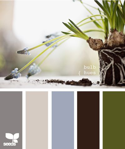 love this color pallete. Toss out the darker grey and add cranberry (my carpet) and this is what I'm shooting for in the living room.