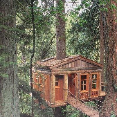 Great Tree Cabin