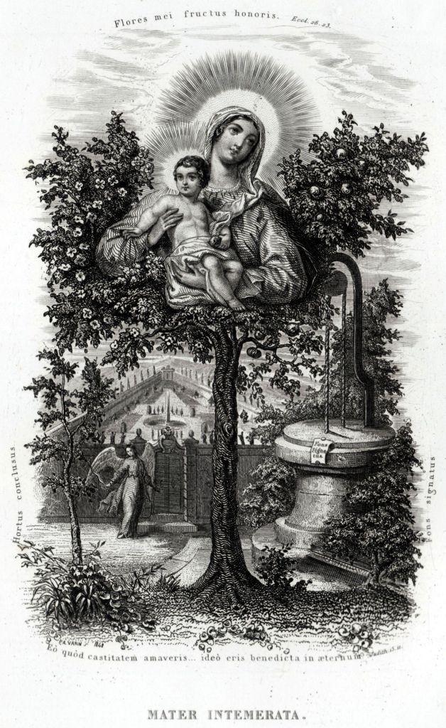 19 Litanie Lauretane SS Vergine Maria Madonna Religione Acciaio Capolavoro 1850 | eBay