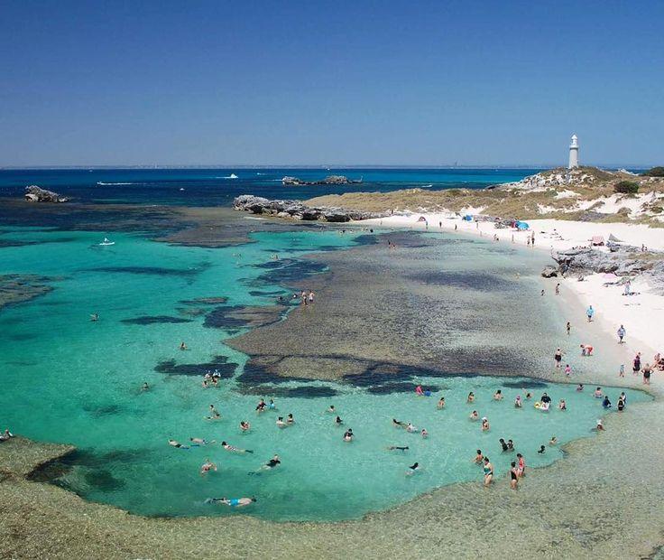 The amazing #Rottnest Island Christmas holidays 2015/2016. #australia #westernaustralia #rottnestisland #wa #paradise #adventure #traveling #travel #travelgram #lighthouse #snorkeling by tess.hathaway http://ift.tt/1L5GqLp