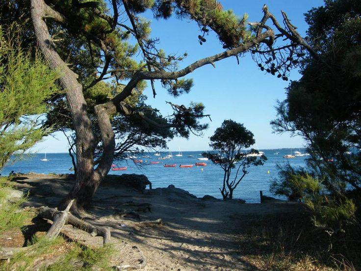 Les 37 meilleures images propos de gorgious vendee sur pinterest villas cottages la mer - Camping bois de la chaise noirmoutier ...