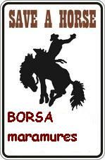 save a horse in rodna mountains -