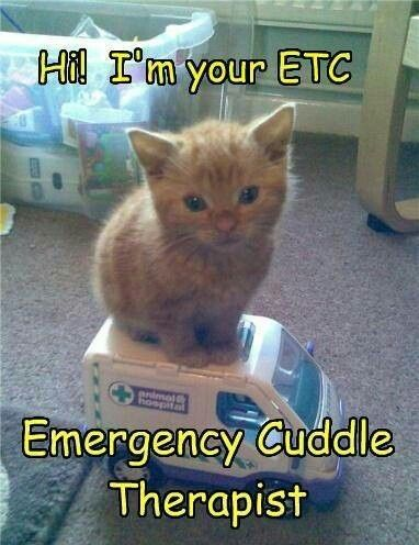 """If it's """"emergency cuddle therapist,"""" it shouldn't be """"ETC"""", it should be """"ECT."""""""