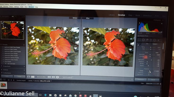 Before and after spot removal taken on Canon 600D, aperture f/5.6, shutter 1/80, ISO 200, focal 36mm, manual WB