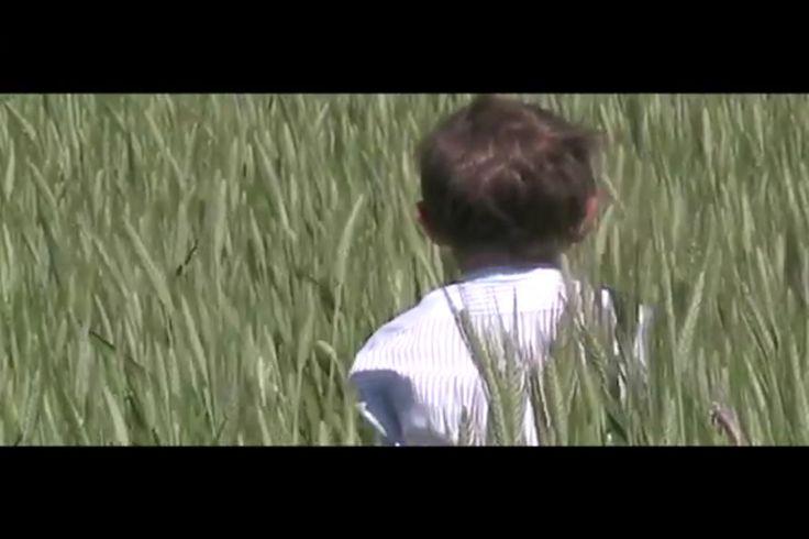 Come in un quadro di #Marialuisaangi frame estratto dal cortometraggio #claudsbooks #federicoangi & #SCAdirector