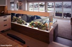 200 gallon living reef custom aquarium. Room divider peninsula style aquarium. In Long Beach, CA