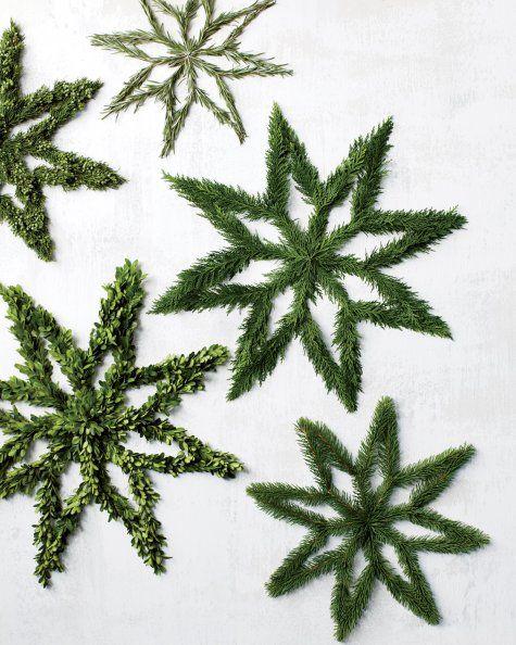 Ever-green stars... http://www.marthastewart.com/865200/evergreen-stars?czone=holiday/workshop-christmas/workshop-christmas-handbook&center=307034&gallery=865159&slide=864837