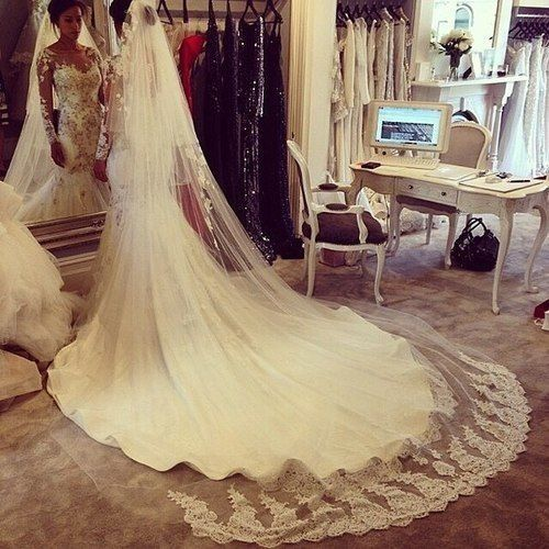 The train and veil are stunning.